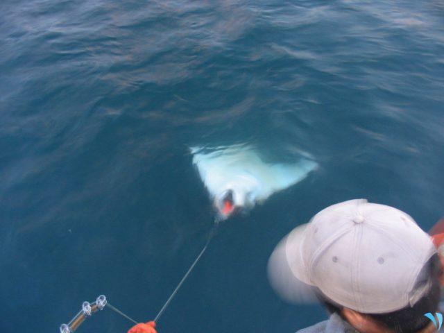 King Salmon Fishing Charter, Sitka, AK | Alaska Fishing Charter