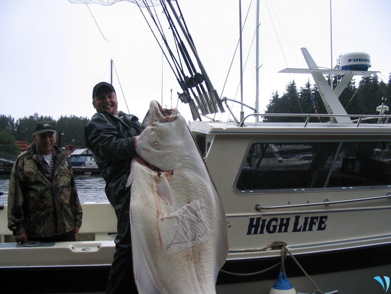 Choosing The Right Fishing Charter For Halibut Fishing In Alaska