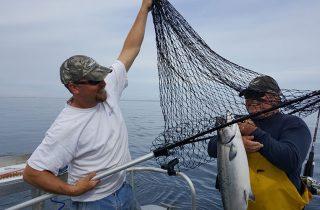 Alaska King Salmon Fishing